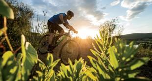aspect-action-image-2016-bike-scott-sports_02