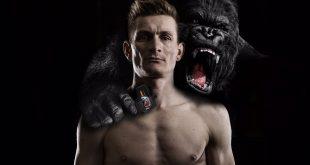 greipel-gorilla