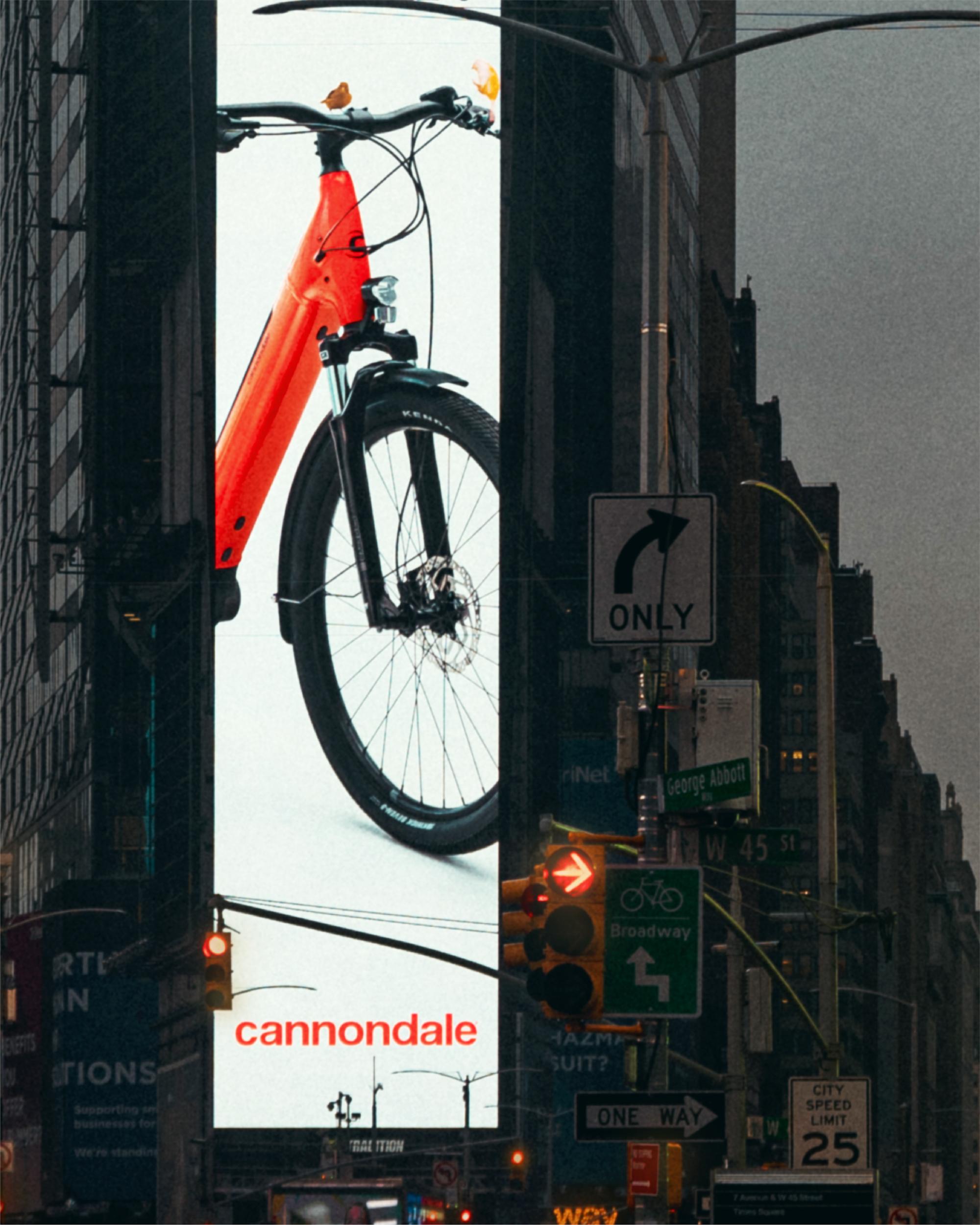 Cannondale Adventure Neo
